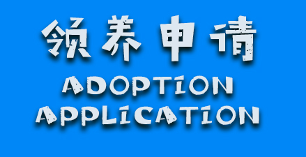 sidebar-adoption application